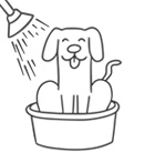 Pöck Icon Hundewaschbox